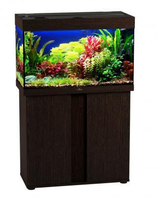 Аквариум Биодизайн Риф 125 (без освещения)